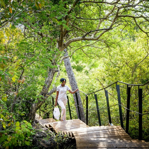 Singita Lebombo Lodge Boardwalk
