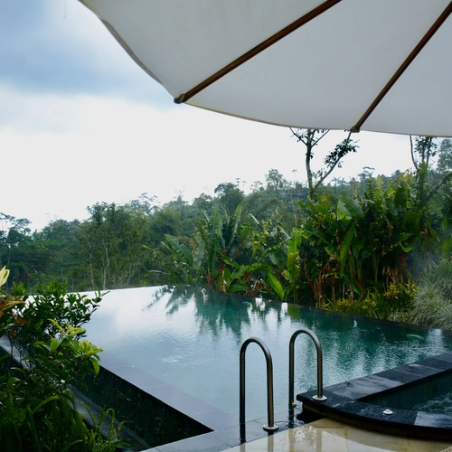Private Pool and Jacuzzi - Two Bed Pool Villa Munduk Moding Plantation