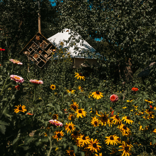 Hunza Ecolodge Glamping Tent Flower Gardens