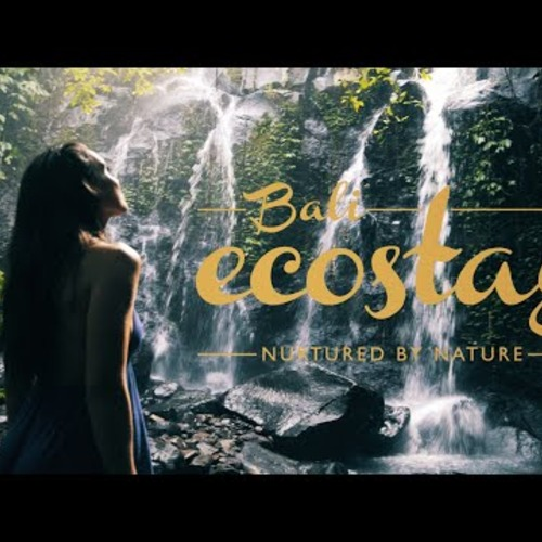 Bali Eco Stay - Get Inspired by nature
