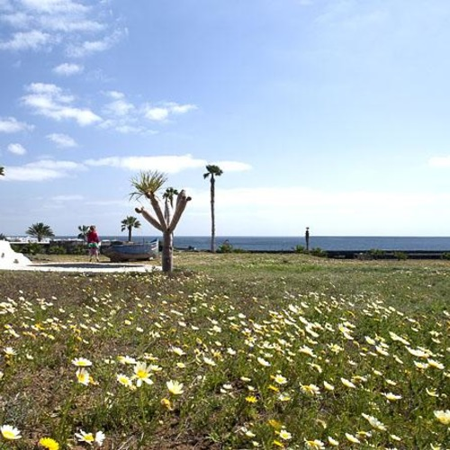 Lanzarote Retreats Sea Views and Wildflowers