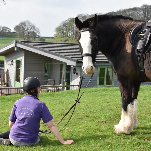 Take your horse on holiday with you at Hoe Grange Holidays