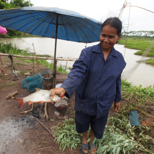 Volunt2Thai Farming