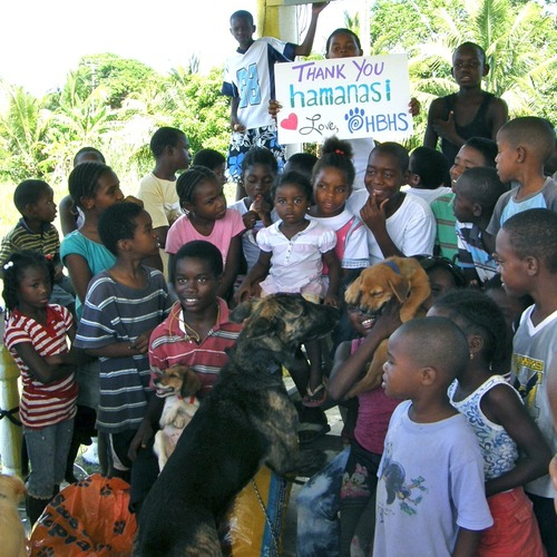 Hamanasi Adventure & Dive Resort Community Development Volunteering