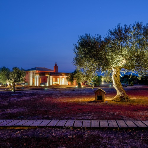 Eumelia Farm Location Olive Groves