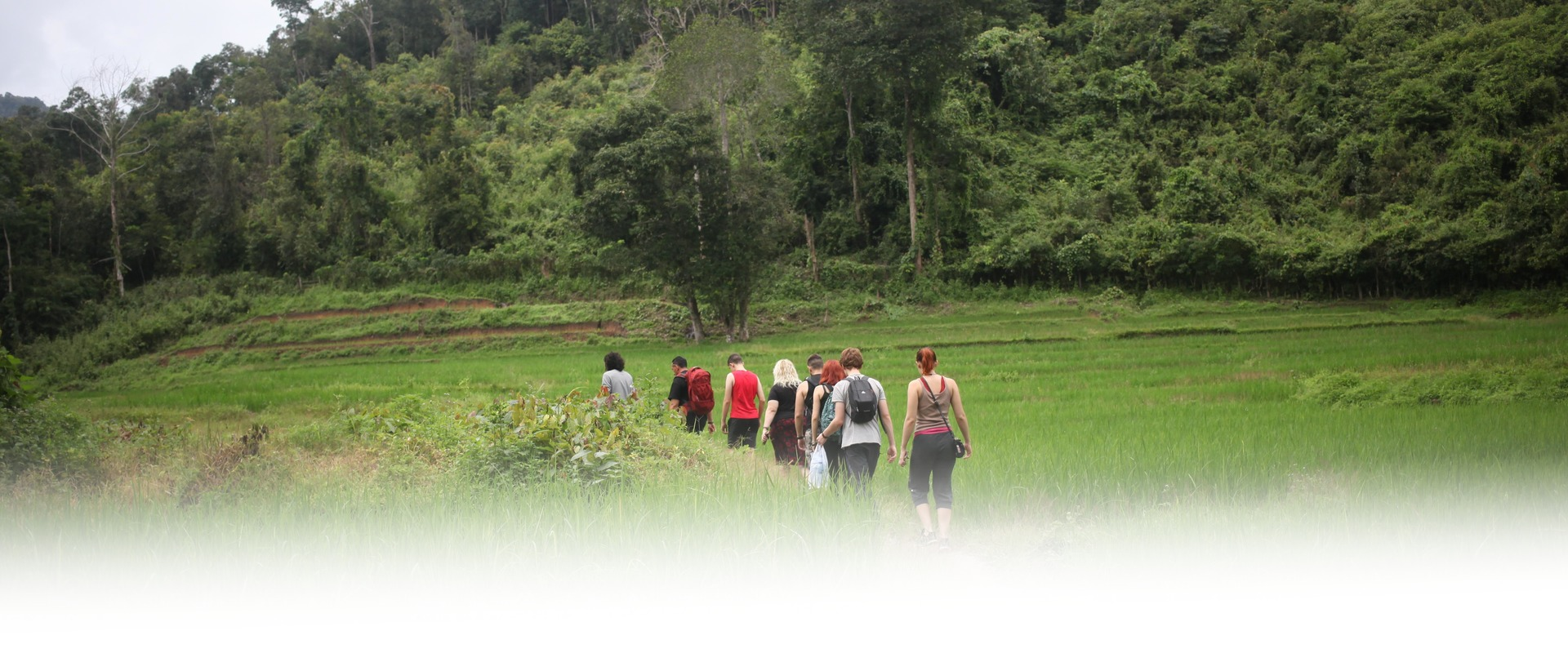 HillTribe Farm Jungle Treks