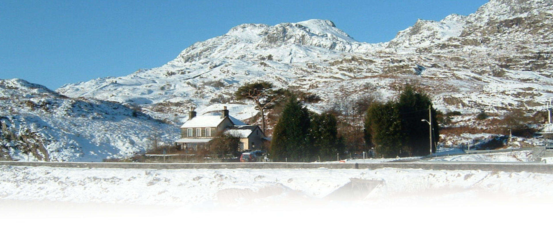 Bryn Elltyd Winter